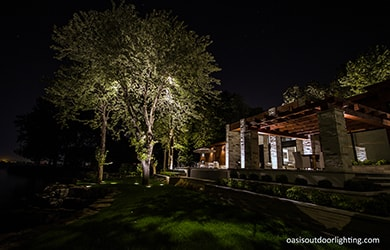 backyard with landscape lighting