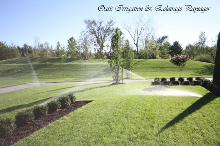 Irrigation-Oasis-arrosage