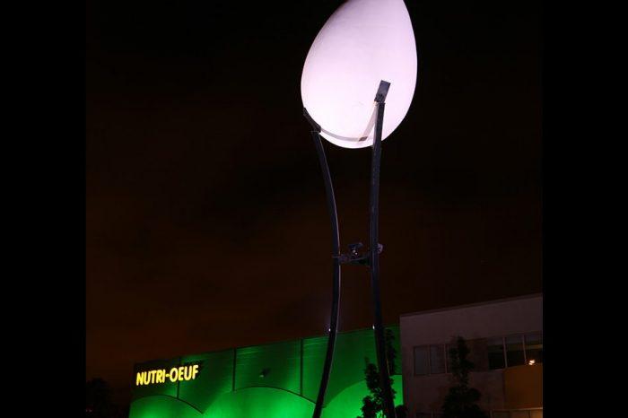 Éclairage entreprise nutri-oeuf