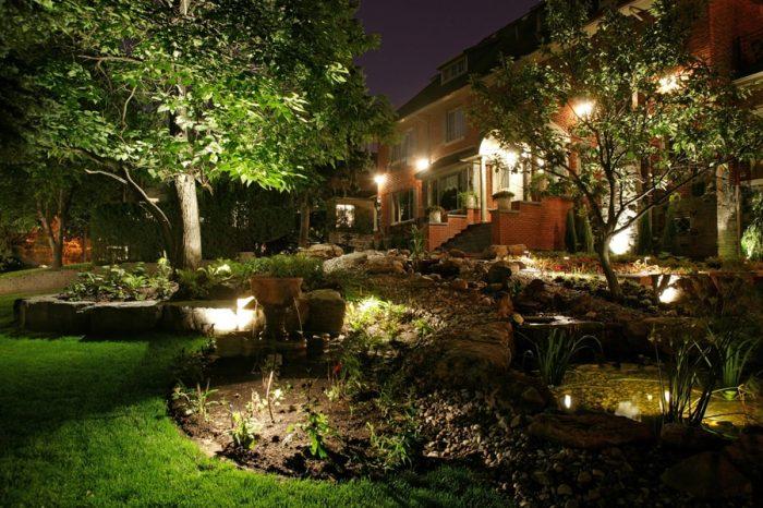 rocailles et plantes éclairé la nuit
