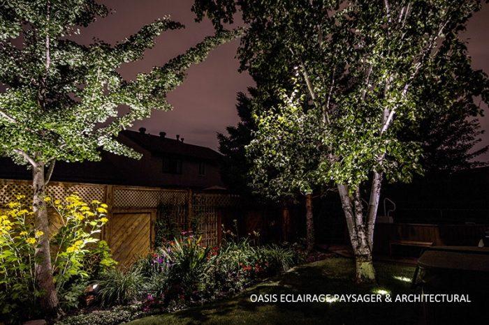 éclairage luminaire sur arbre extérieur