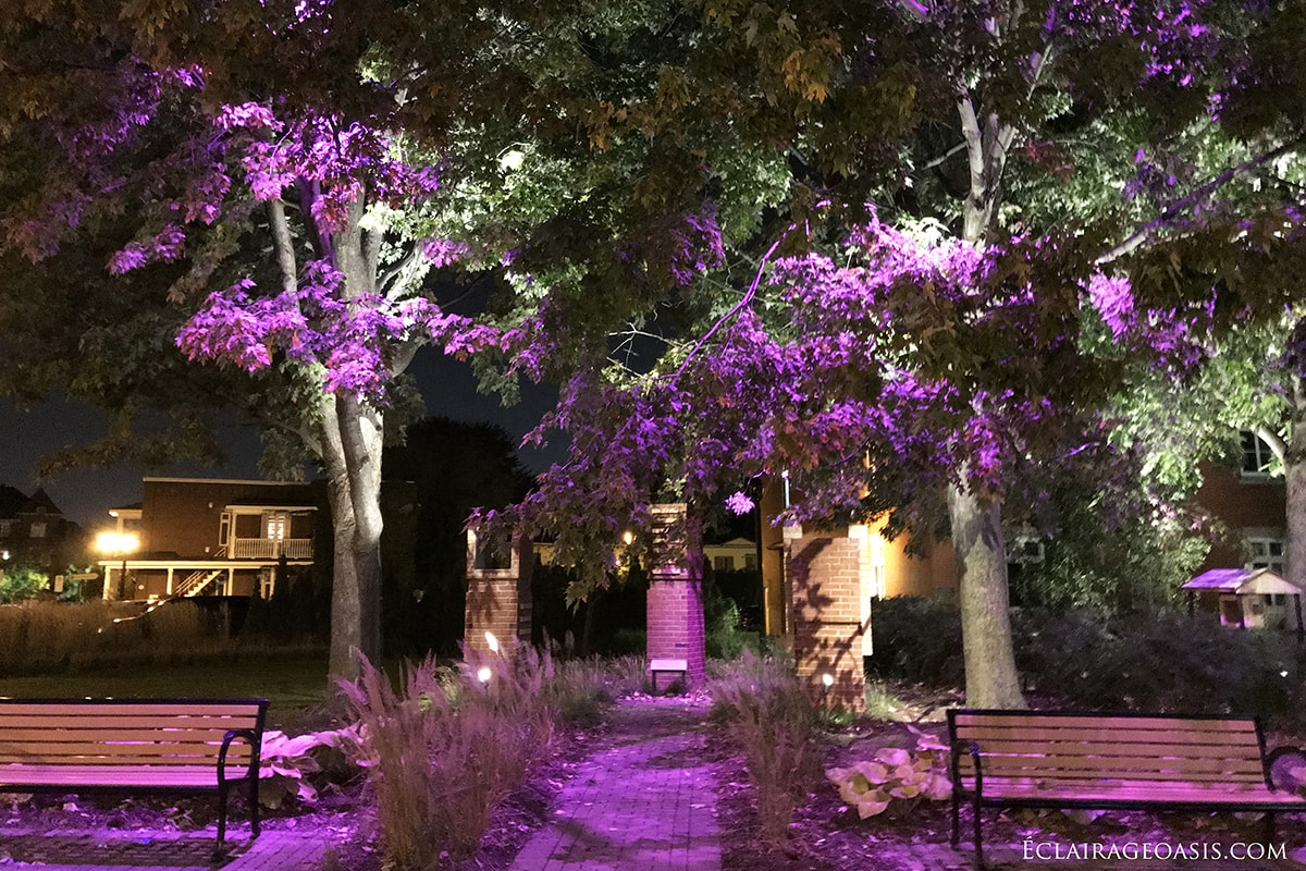 oasis-eclairage-couleur