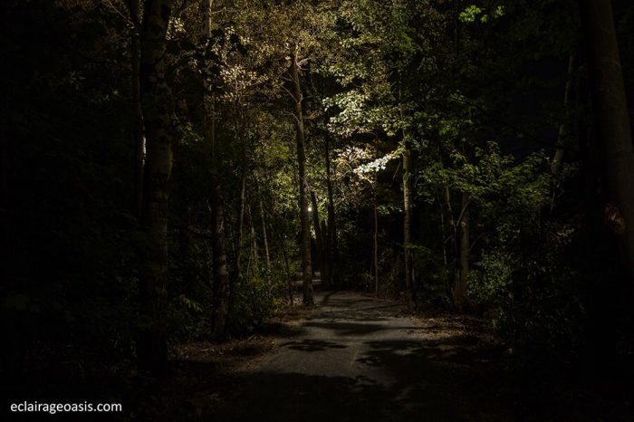eclairage-paysager-sentier