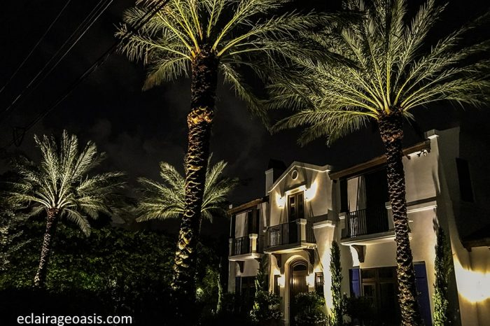 eclairage-payager-sud-palmier