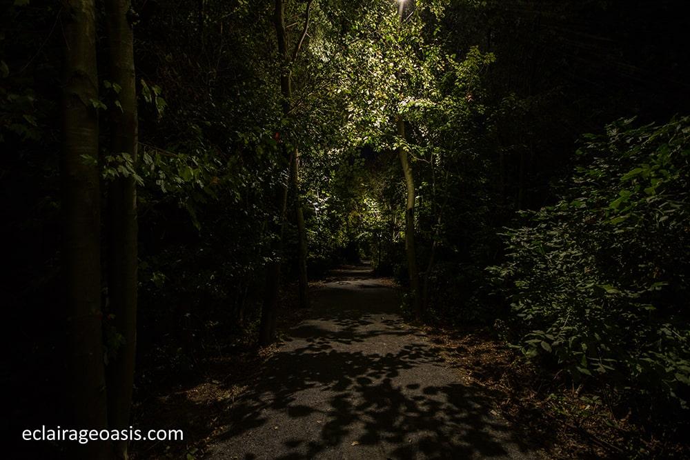 eclairage-exterieur-sentier-marquises-beloeil-4