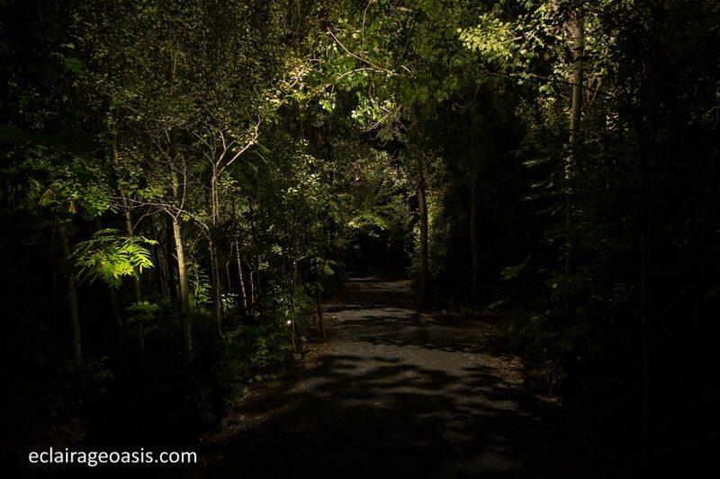eclairage-passage-municipale-nuit